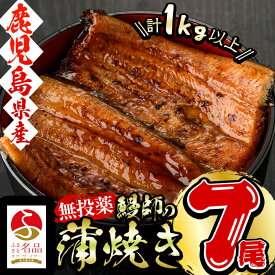 【ふるさと納税】<2020年3月に発送予定>日本初!無投薬で育った鰻師の蒲焼<大サイズ7尾> 計1kg以上!真空パックでうなぎのおいしさそのまま!【山田水産】c6-036