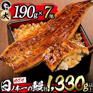 【ふるさと納税】うなぎ生産量日本一の鹿児島県産!日ノ本一の鰻の蒲焼き<大>7尾セット(計1,330g以上)たれ、山椒付き!「酸素たっぷり贅沢水」で育ったおいしいウナギ【日鰻】e0-018