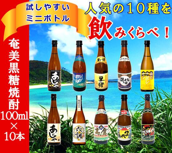 【ふるさと納税】奄美黒糖焼酎 飲みくらべセット 100ml×10本(箱入)