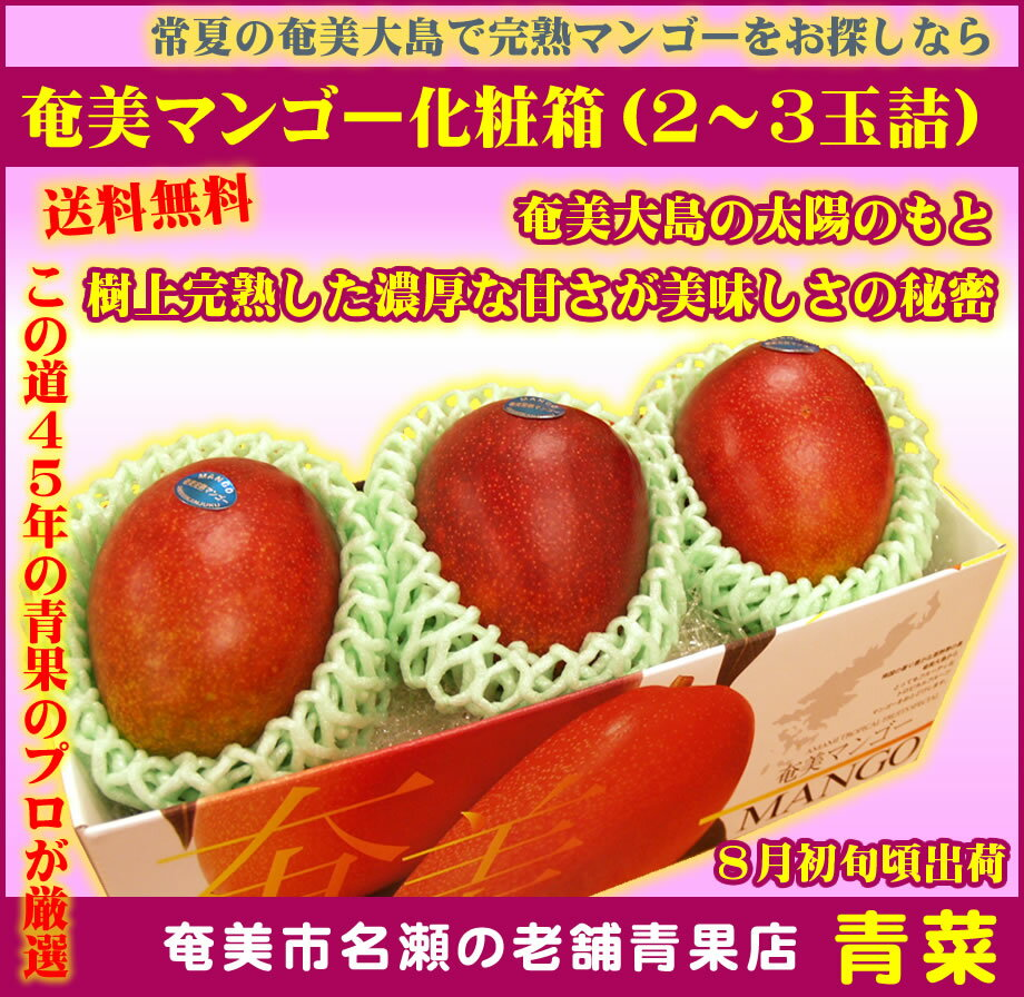 【ふるさと納税】奄美マンゴー 化粧箱(2〜3玉詰)【送料無料】