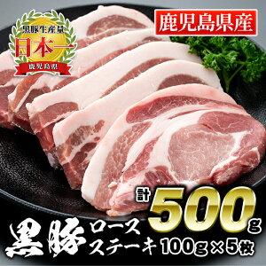 【ふるさと納税】鹿児島県産豚肉!黒豚ロースステーキ 100g×5枚(計500g)!【財宝】【A0-42】