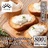【ふるさと納税】クリームチーズ(計800g・100g×8個)お米育ち由来のあっさりやさしいミルクで作ったフレッシュチーズ!デザート・お菓子・おつまみ等に大活躍【伊佐牧場】