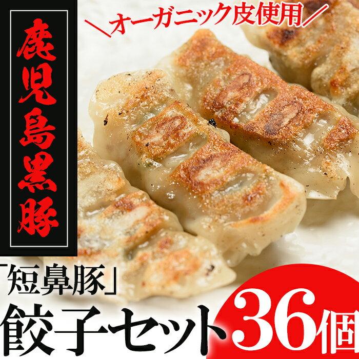 【ふるさと納税】鹿児島黒豚「短鼻豚」餃子セット(オーガニック皮使用) 36個【鹿児島ますや】