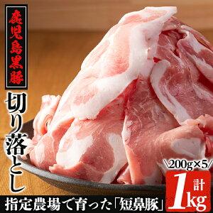 【ふるさと納税】鹿児島黒豚「短鼻豚」切り落とし肉!合計1kg(200g×5パック)!黒豚肉の切り落し!肉じゃがや生姜焼き、カレーや豚汁などに♪【鹿児島ますや】