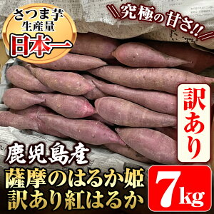 【ふるさと納税】《訳あり》鹿児島県産 薩摩のはるか姫 訳あり紅はるか7kg(生芋)鹿児島県産サツマイモべにはるかを独自の貯蔵庫で熟成させ甘さ溢れる蜜芋に仕上げたさつまいも【甘いも販