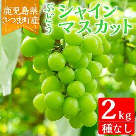 【ふるさと納税】<ご予約受付中!2020年8月〜10月の間に発送予定>鹿児島県さつま町産のぶどう♪シャインマスカット(2kg)皮ごと食べれる!ジューシーで上品な甘みのブドウ【大蔵果樹園】