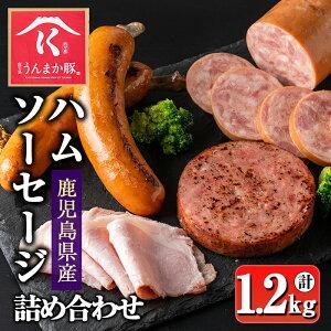 【ふるさと納税】鹿児島うんまか豚ソーセージ・ハム4種詰め合わせ(計約1.2kg) 鹿児島県産豚肉!うんまか豚のボロニアソーセージ・ステーキ、骨付きフランク、ロースハムをセットでお届け