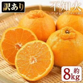 【ふるさと納税】《数量限定・訳あり品》不知火(デコポン)L~4L サイズ混合 8kg_yamagami-5311