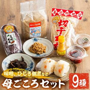 【ふるさと納税】おふくろの味 母ごころセット_san-46
