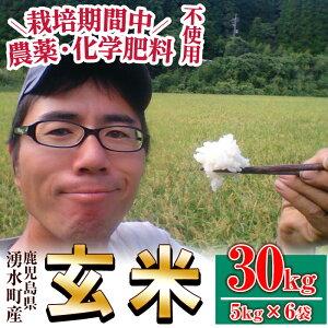 【ふるさと納税】《数量限定》栽培期間中農薬・化学肥料不使用で栽培した湧水町産玄米計30kg(約5kg×6袋)【そのやま農園】