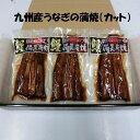 【ふるさと納税】【九州産】備長炭手焼きうなぎの蒲焼(カット)