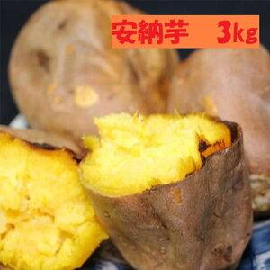 【ふるさと納税】大崎町産 安納芋の冷凍焼き芋(3kg入)