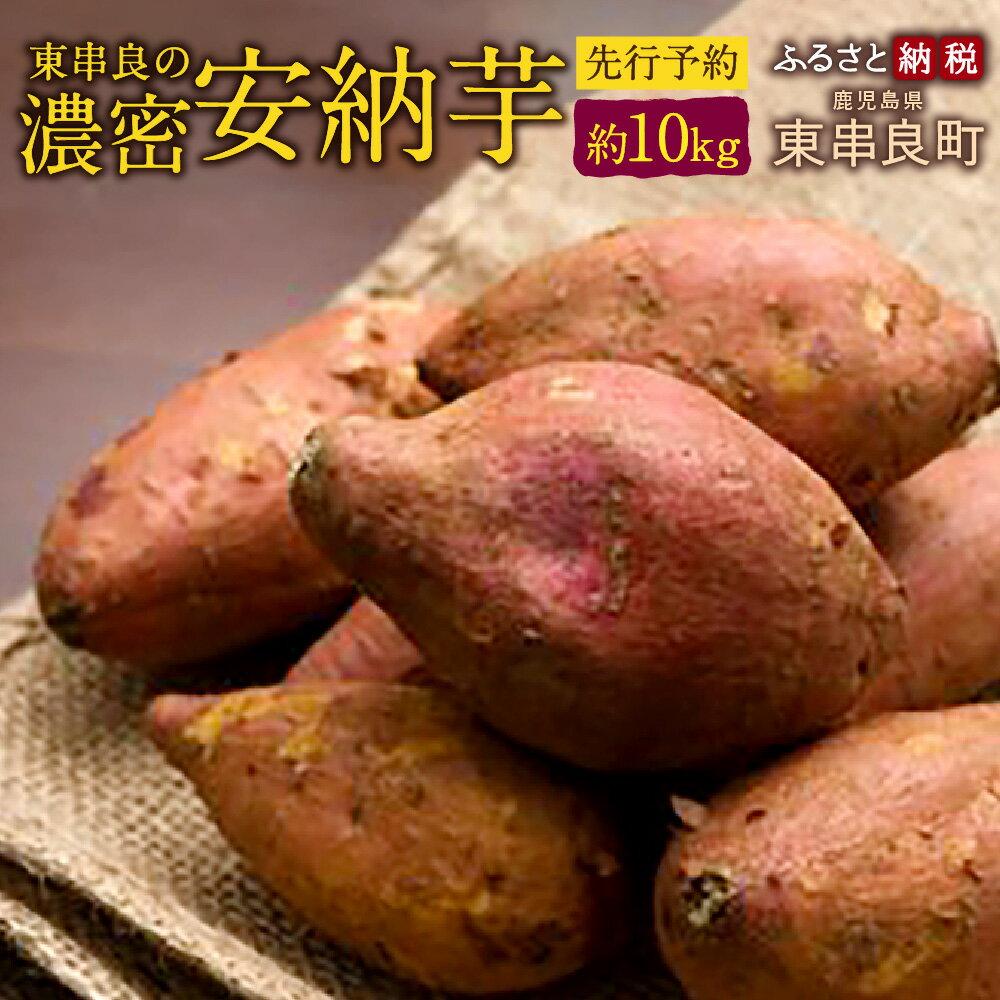 【ふるさと納税】東串良の濃密安納芋 (先行予約) 約10kg さつまいも 安納芋 サツマイモ 焼芋 ヤキイモ 国産 九州産 芋 いも 送料無料