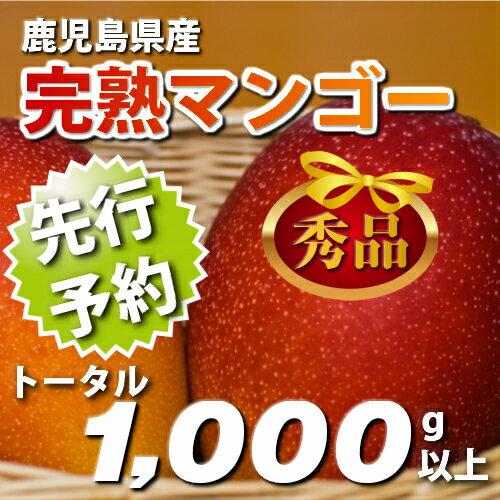 【ふるさと納税】鹿児島県産完熟マンゴー☆秀品1000g以上(先行予約)
