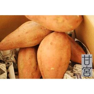 【ふるさと納税】安納芋の焼芋 定期お届けコース2kg【全5回】   ふるさと 納税 支援 鹿児島県 南大隅町 鹿児島 お土産 お取り寄せ ご当地 焼き芋 やきいも さつまいも サツマイモ さつま芋 定