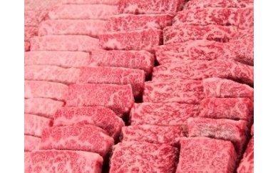 【ふるさと納税】鹿児島県産黒毛和牛カルビ焼肉用