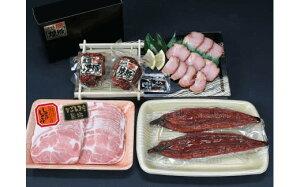 【ふるさと納税】 鹿児島県産 うなぎ 2尾 ・ 黒豚肩ロース ・ 黒豚焼豚 2個 セット