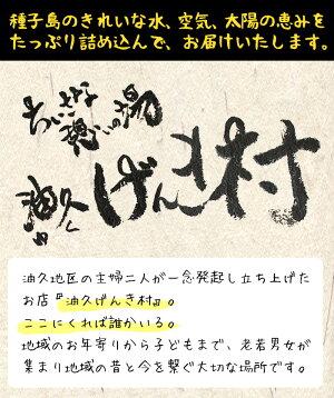 【ふるさと納税】種子島産!黒米(計1.2kg・200g入×6個)!【油久げんき村】