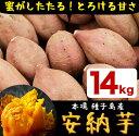 【ふるさと納税】種子島産 安納芋 14kg