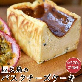 【ふるさと納税】屋久島のバスクチーズケーキ 【パッションフルーツ】