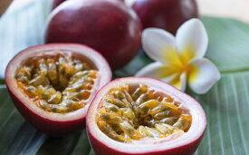 【ふるさと納税】ながむら農園のパッションフルーツ(ご家庭用1.2キロ)