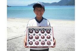 【ふるさと納税】O-7 加計呂麻島産パッション(厳選12玉化粧箱入り 3箱)カケロマパッショングループ