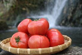 【ふるさと納税】『喜界島トマト』2kg バガス醗酵有機肥料使用栽培
