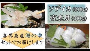 【ふるさと納税】真空冷凍 夜光貝の刺身500g・冷凍ソデイカ500gセット