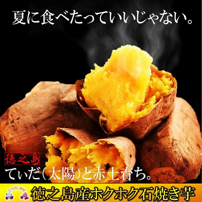 【ふるさと納税】徳之島産石焼炭火焼 石焼いも(3kg)