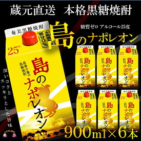 【ふるさと納税】(蔵元直送便)本格黒糖焼酎 島のナポレオン900mlパック×6本(数量限定)