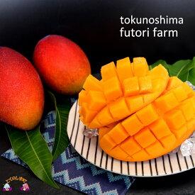 【ふるさと納税】てぃだ(太陽)をたっぷり浴びた 徳之島ふとり農園の完熟マンゴー(1kg)