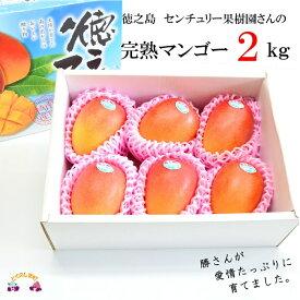 【ふるさと納税】センチュリー果樹園の勝さんが大切に育てた完熟マンゴー(2kg)