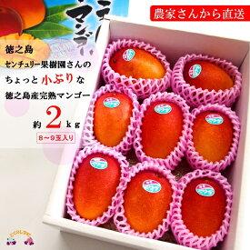 【ふるさと納税】(ワケあり)徳之島センチュリー果樹園さんのちょっと小ぶりな完熟マンゴー(2kg)