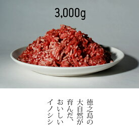 【ふるさと納税】リュウキュウイノシシミンチ肉3,000グラム