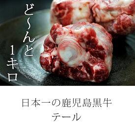 【ふるさと納税】 日本一の鹿児島黒牛!! 牛テール1キロ