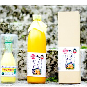 【ふるさと納税】B-25 徳之島のビタミンセット ◎たんかんジュース&クネンボ果汁