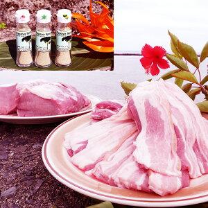 【ふるさと納税】【鹿児島徳之島】島豚Dセット(三枚肉スライスと島豚ロース)&パパイヤスパイス3種セット
