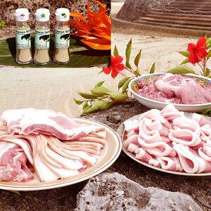 【ふるさと納税】【鹿児島徳之島】 島豚焼肉&パパイヤスパイス3種セット