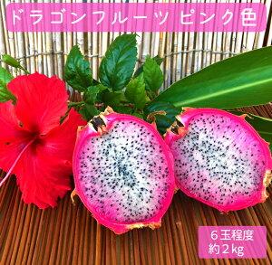 【ふるさと納税】【鹿児島県徳之島】天城町産ドラゴンフルーツ(ピンク色) 6玉程度 約2kg