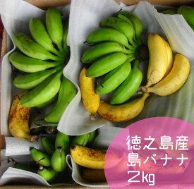 【ふるさと納税】【鹿児島県天城町】徳之島子宝バナナ 2kg