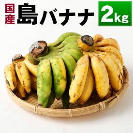 【ふるさと納税】国産 徳之島子宝バナナ 2kg 島バナナ バナナ フルーツ 果物 南国フルーツ くだもの 九州産 送料無料