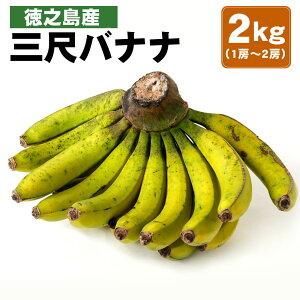 【ふるさと納税】徳之島産 三尺バナナ 2kg (1房〜2房)フルーツ 果物 バナナ ばなな 南国フルーツ くだもの 九州産 国産 送料無料