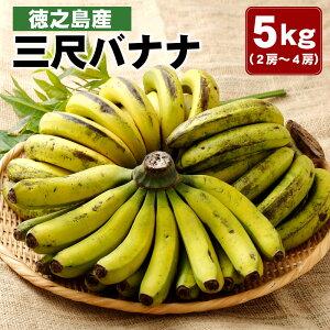 【ふるさと納税】徳之島産 三尺バナナ 5kg (2房〜4房)フルーツ 果物 バナナ ばなな 南国フルーツ くだもの 九州産 国産 送料無料