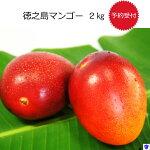 【ふるさと納税】マンゴー2kg