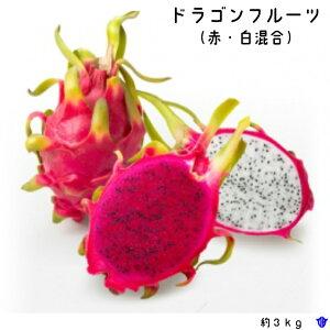 【ふるさと納税】徳之島ドラゴンフルーツ(赤・白混合)
