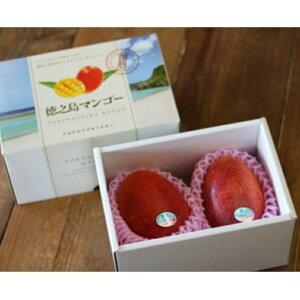 【ふるさと納税】清水果樹園のマンゴー1kg(化粧箱入り)