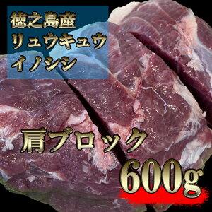 【ふるさと納税】リュウキュウイノシシ600g(肩ロースブロック)ss006