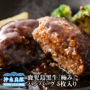 【ふるさと納税】鹿児島黒牛 『極み』ハンバーグステーキ 5枚入り