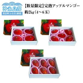 【ふるさと納税】【数量限定】田中マンゴー園の完熟アップルマンゴー4〜6玉で2kg