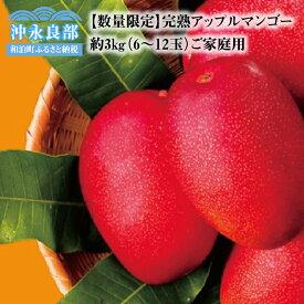 【ふるさと納税】【数量限定】田中マンゴー園の完熟アップルマンゴー6〜12玉で3kg(ご家庭用)